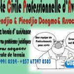 SOCIÉTÉ CIVILE PROFESSIONNELLE D'AVOCATS Piendjio & Piendjio Dongmo & Associés